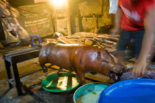 fakta tentang daging babi  Info Menarik  Unik