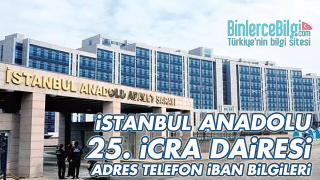 İstanbul Anadolu 25. İcra Dairesi Adresi, Telefonu, İBAN Numarası