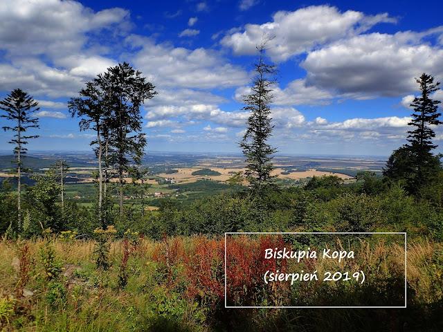 Najwyższy szczyt Gór Opawskich - Biskupia Kopa 891 m n.p.m.