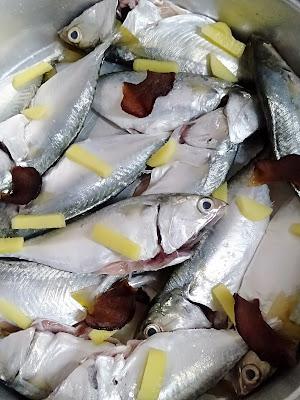 Ikan Lengat