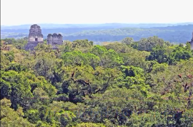Tikal temple glotemal