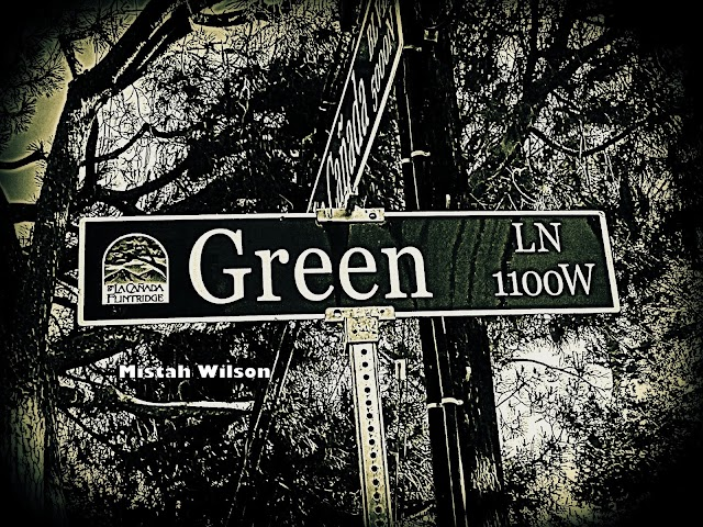Green Lane, La Cañada Flintridge, California by Mistah Wilson
