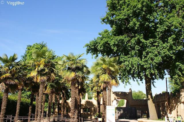 Panoramica della zona di accesso al parco