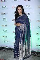 Dia Mirza in Sizzling Designer Saree at THE OLIVE CROWN AWARDS 2017 05.jpg