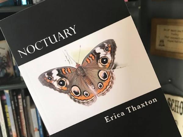Noctuary - Published!