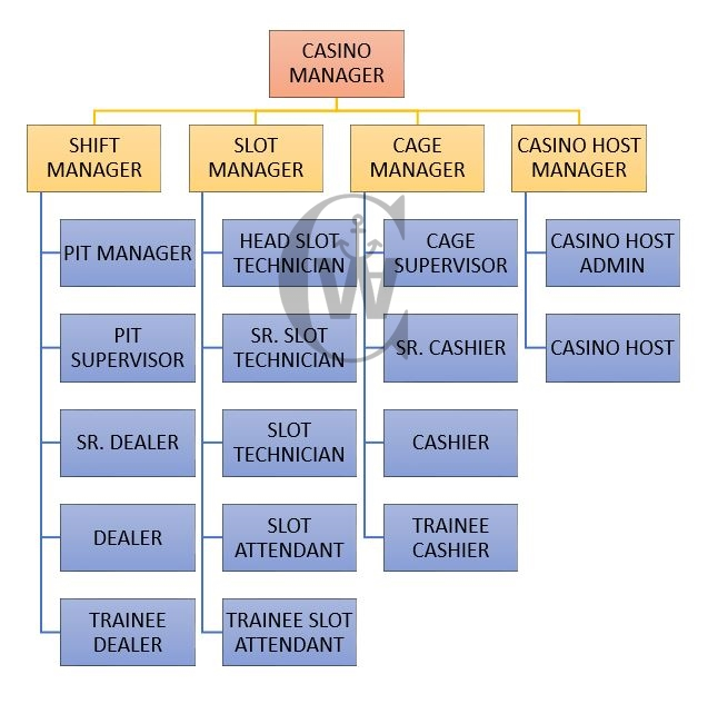 Hierarchy Of Casino Department: Complete Position Chat of Casino Department