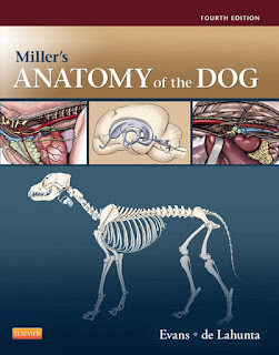 Miller's Anatomy of the Dog 4th Edition