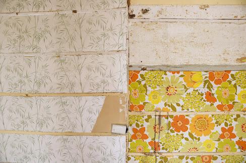 Old Wallpaper Found in Kitchen Renovation