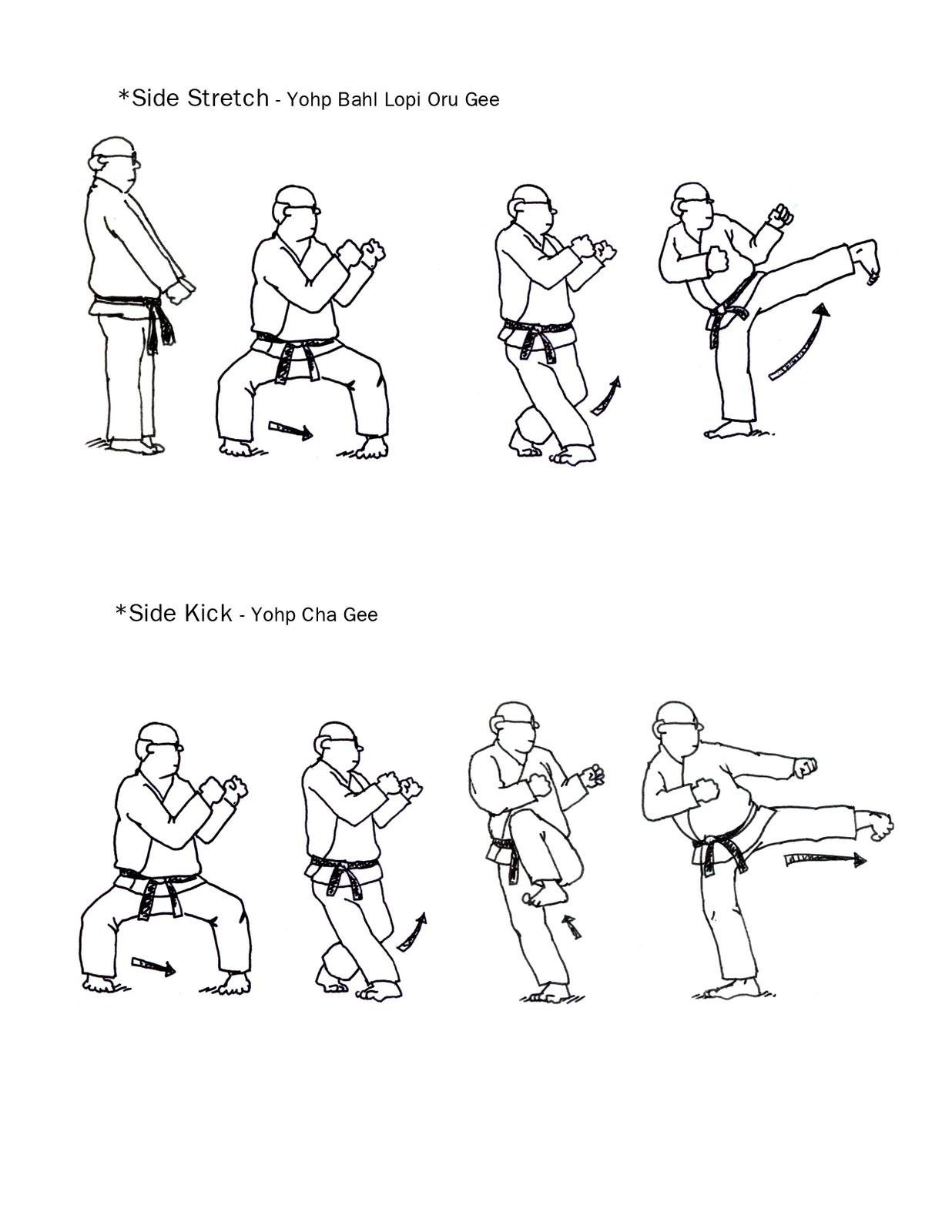 Karate Clipart Karate Tiger Taekwondo Coloring Pages Image ... | 1600x1236