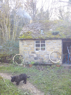 Jet the dog outside the Bothy Shop