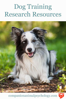 Dog training research resources for happy dogs like this border collie
