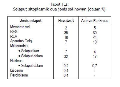 Selaput sitoplasmik dua jenis sel hewan