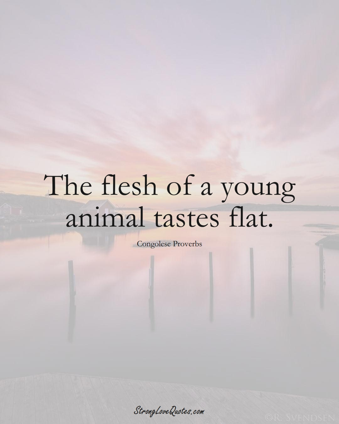 The flesh of a young animal tastes flat. (Congolese Sayings);  #AfricanSayings