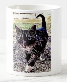 """""""CAT"""" The KITTEN"""