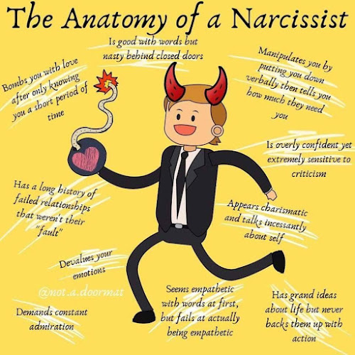 Anatomy of a Narcissist