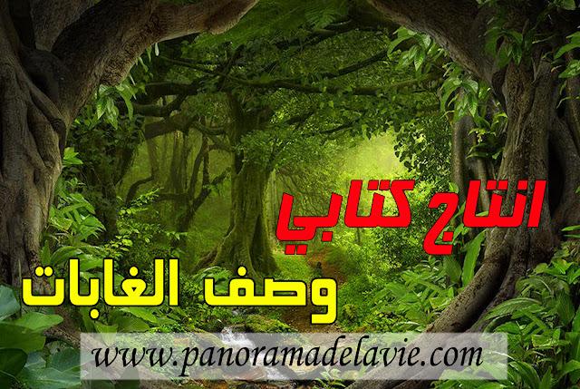 انتاج كتابي حول الغابات