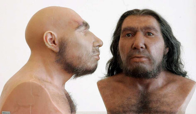 ADN_humano_neandertal