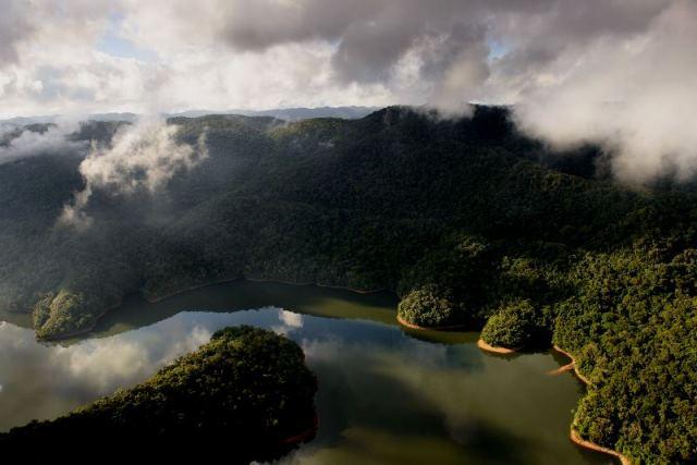 Estudo comprova relação direta da boa qualidade da água com a existência de florestas