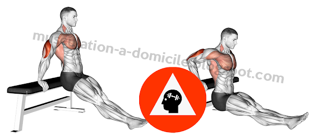 musculation exercice reverse dips