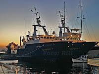 proslava 100 godina tvornice Sardina Postira otok Brač slike