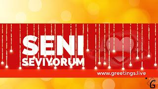 I love you in Turkish Language seni seviyorum .jpg