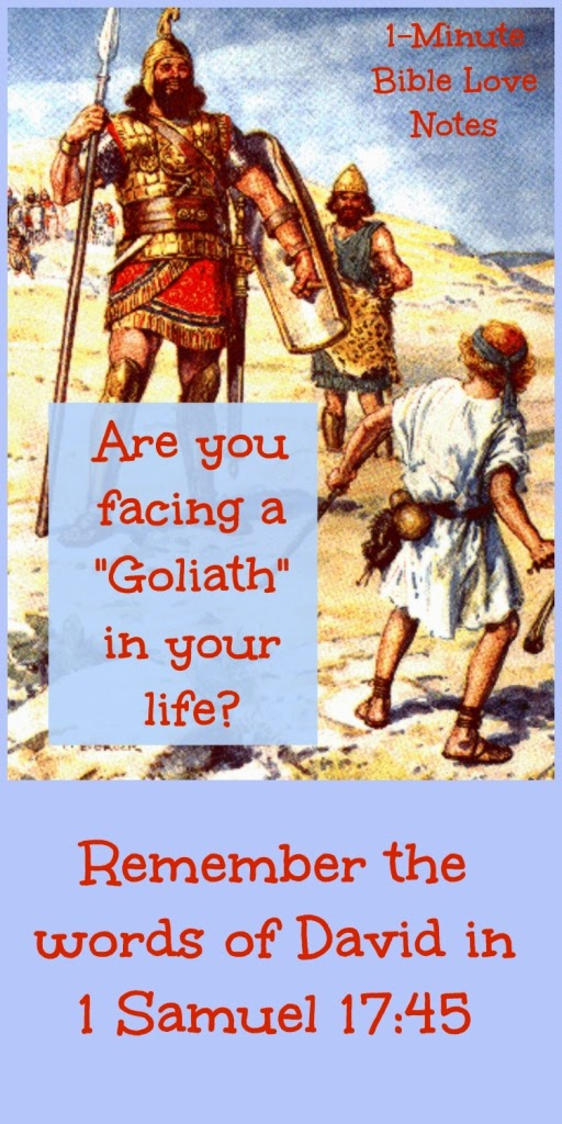 1 Samuel 17:45; Psalm 20:7-8; David and Goliath