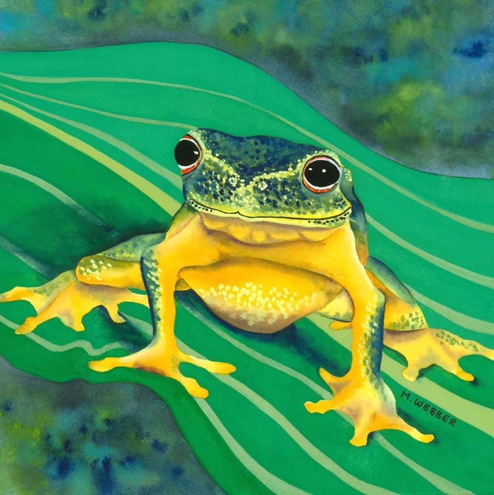 Not getting a real job: The frog who turned into some prints