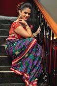 Shilpa Chakravarthy New sizzling photos-thumbnail-17