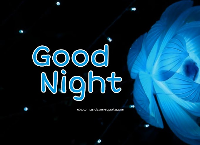 Latest Beautiful good night wishes | Handsome Quote