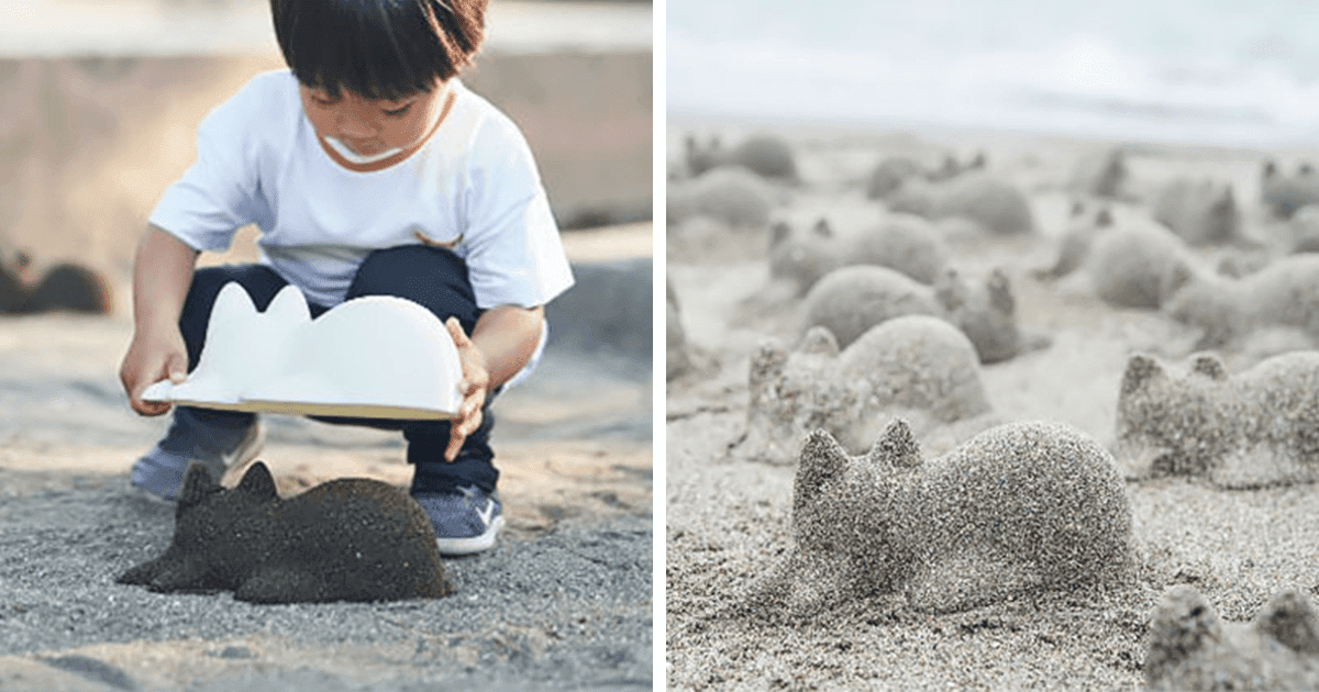 From Rice To Sand, This Japanese Cat Mold Can Transform Anything Into A Cat