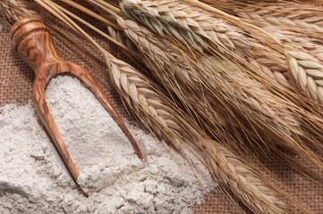 Indústria de farinhas