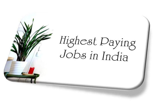 Most Highest Paying Jobs in India for Fresher