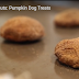 Pumpkin and Peanut Butter Paw Treats