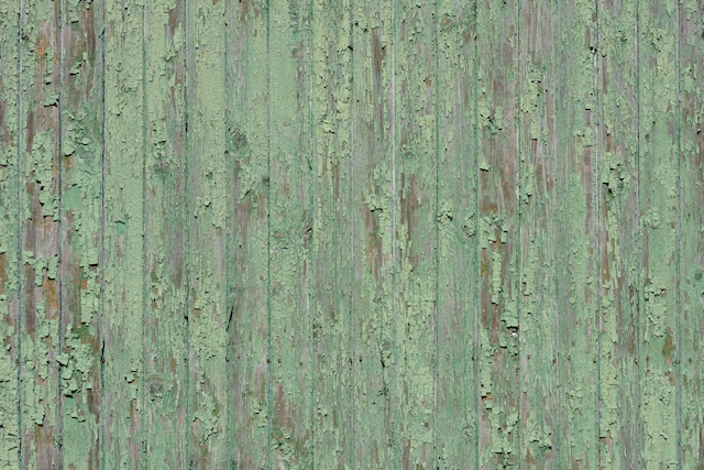 Wood, Green, Vertical, Texture, 3767 x 2511