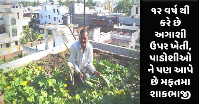 ૧૨ વર્ષ થી કરે છે અગાશી ઉપર ખેતી, પાડોશીઓ ને પણ આપે છે મફતમા શાકભાજી