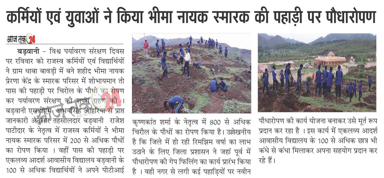 कर्मियों एवं युवाओं ने किया भीमा नायक स्मारक की पहाड़ी पर पौधारोपण | karmiyo evm yuvao ne kiya bhima nayak smarak ki pahadi per poudharopan