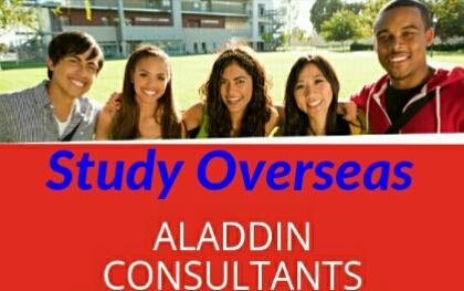 Aladdin consultants in Nairobi