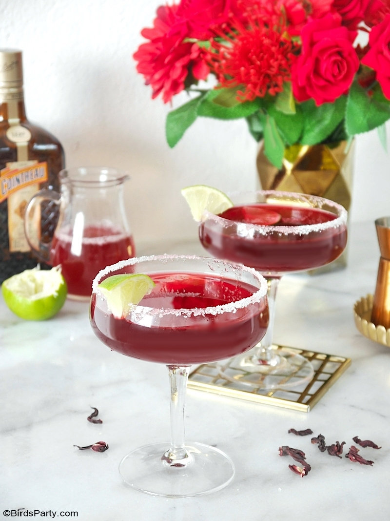 Hibiscus Margarita Cocktail Recipe