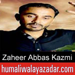 https://humaliwalaazadar.blogspot.com/2019/08/zaheer-abbas-kazmi-nohay-2020.html