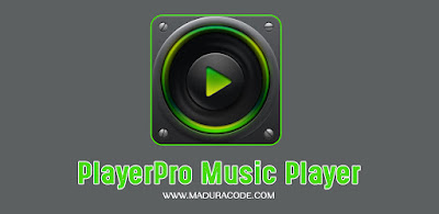 Download PlayerPro Music Player Apk Mod