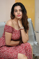 Diksha Panth in a Deep neck Short dress at Maya Mall pre release function ~ Celebrities Exclusive Galleries 016.JPG