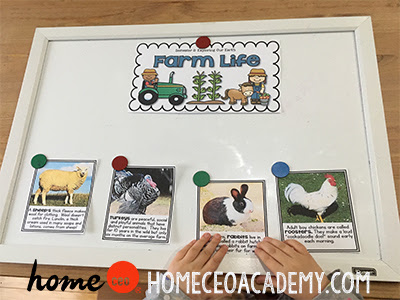 https://www.teacherspayteachers.com/Product/Farm-Life-Week-18-Age-4-Preschool-Homeschool-Curriculum-by-Home-CEO-2525095