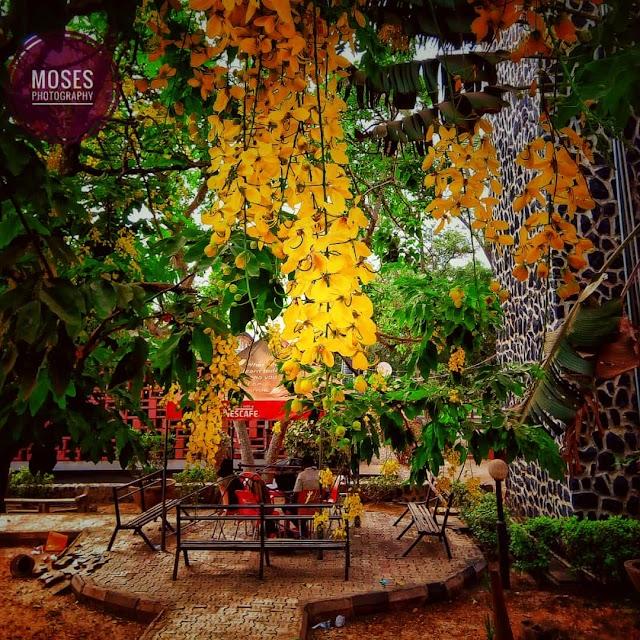 CAMPUS TORI: 6 Romantic Places in the University of Ibadan