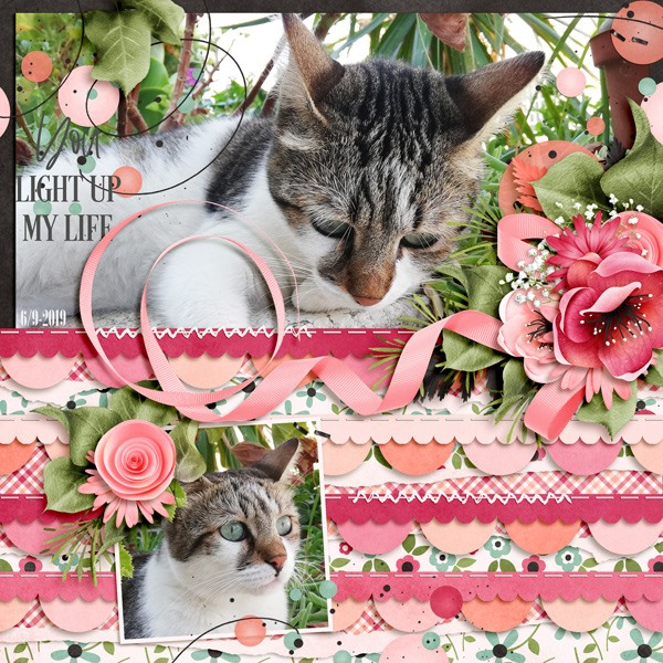 Borderline Digital Scrapbooking Templates