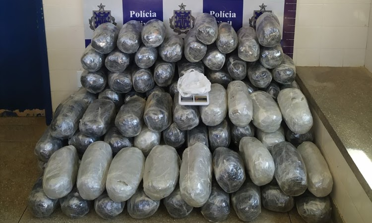 Drogas avaliadas em R$ 200 mil são apreendidas na Chapada Diamantina