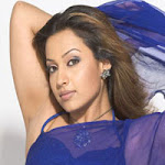 Asha Saini Hot and Spicy Pictures In Navel Saree