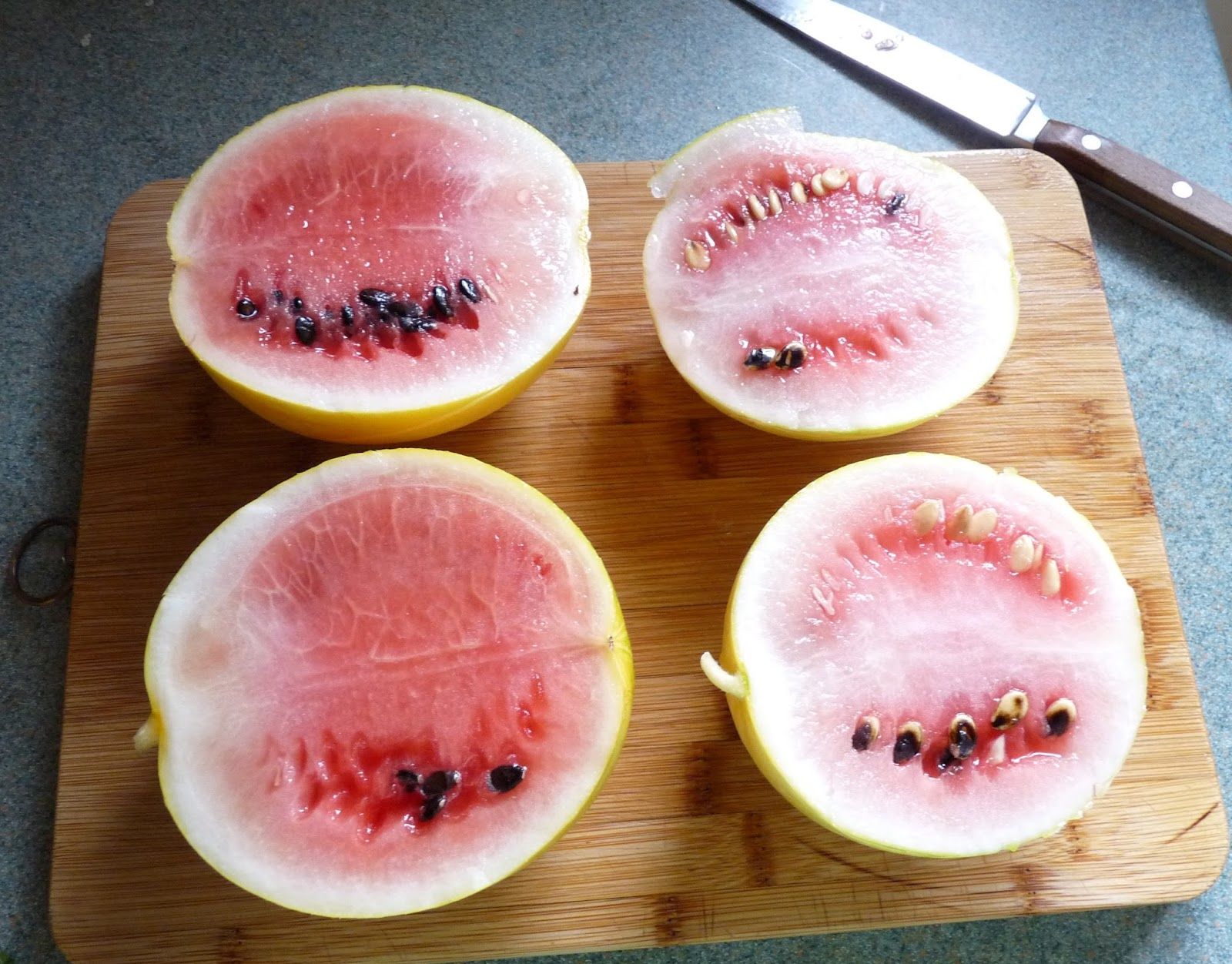 How to grow watermelon in Siberia in a greenhouse 59