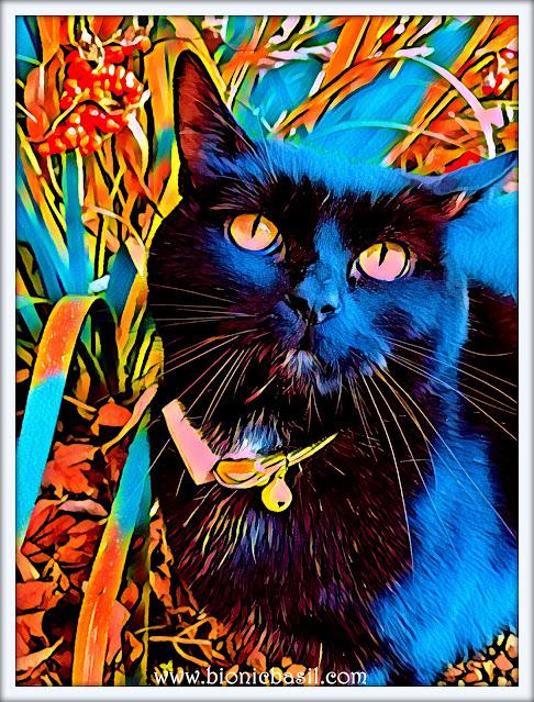 Parsley's Dreamy Selfie  ©BionicBasil® Caturday Art
