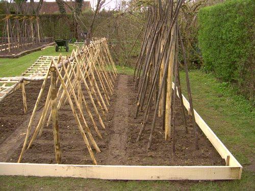 Le blog du Jardinier du Prieuré d'Orsan: Le parc à tomates...