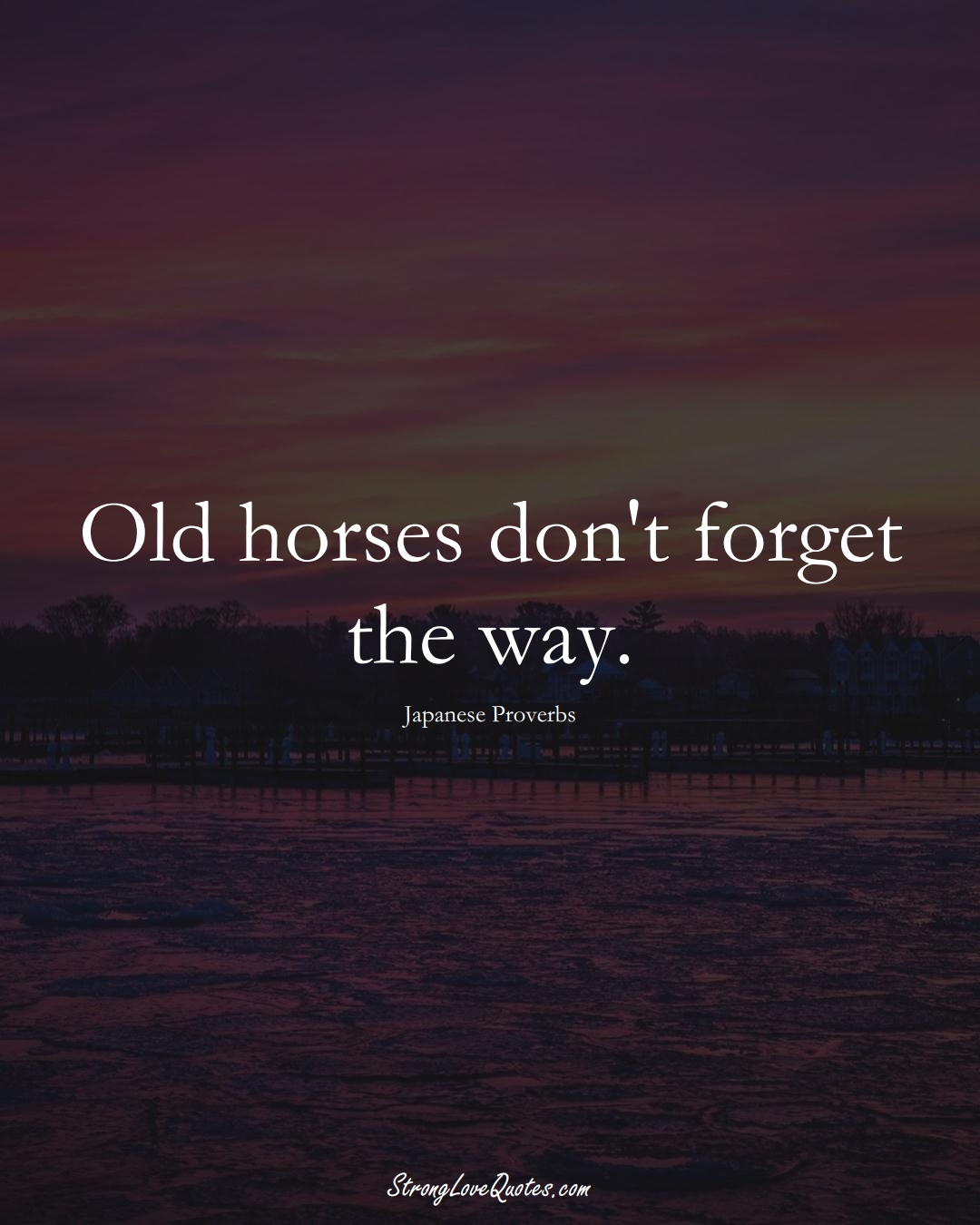 Old horses don't forget the way. (Japanese Sayings);  #AsianSayings
